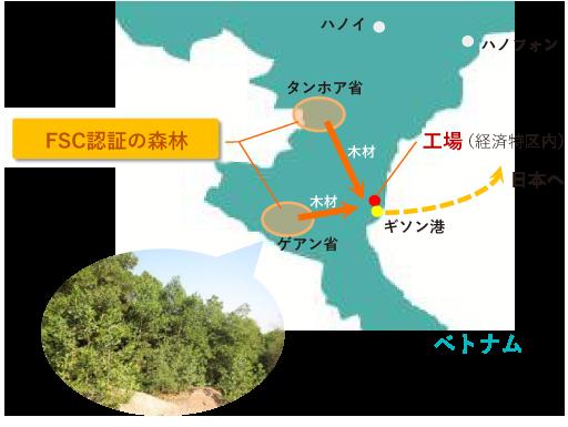 FSC認証の森林